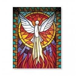 100 Postales - Espíritu Santo