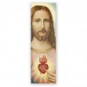 100 Puntos de Lectura Sagrado Corazón