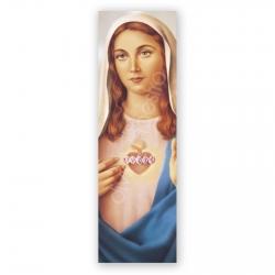 100 Puntos de Lectura Inmaculado Corazón de María