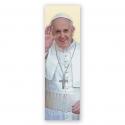 100 Puntos de Lectura Papa Francisco
